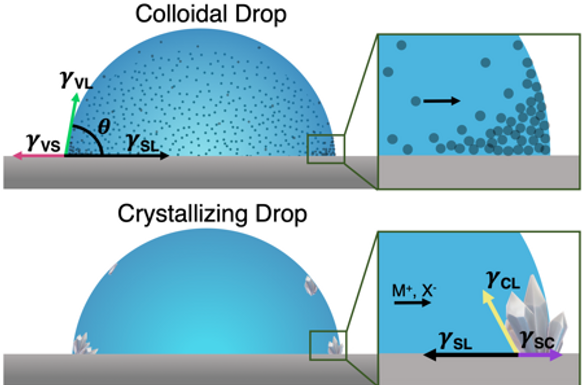 Differences between Colloidal and Crystalline Evaporative Deposites