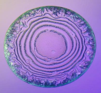 Evaporative Crystallization of Spirals