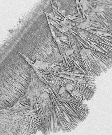 gypsum needles