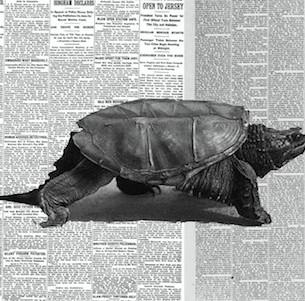 Que viva el Podcast y el Periodismo lento