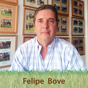 Felipe Bove y una centenaria historia familiar