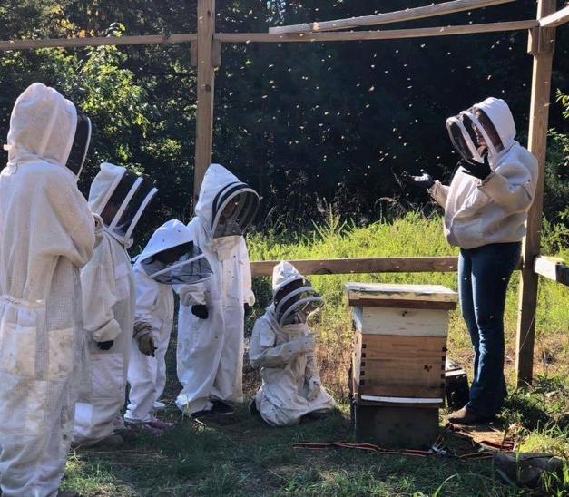 Beekeeping & Gardening
