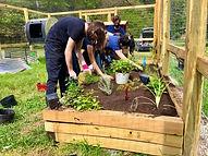 upper school students planting the polli