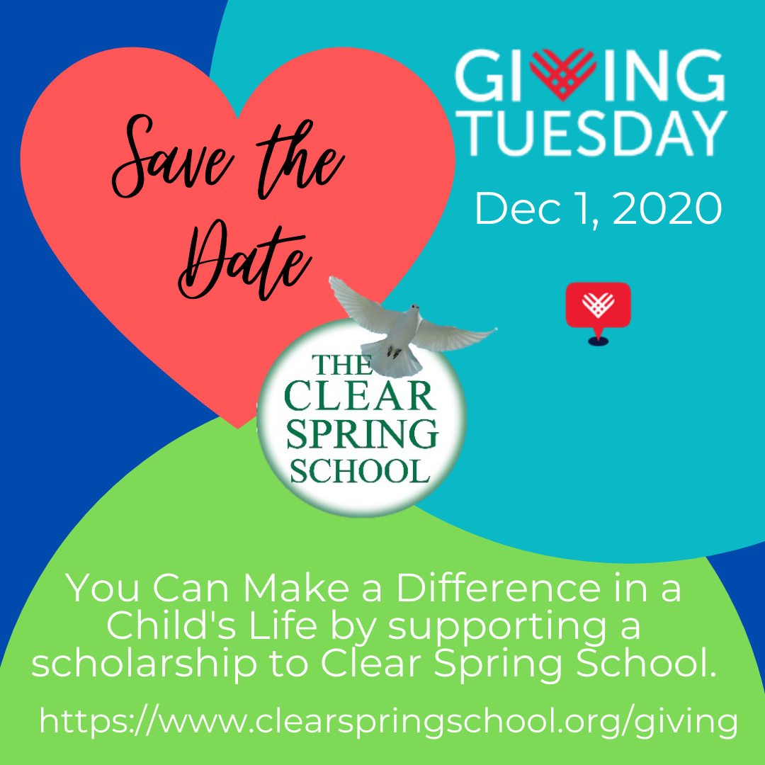 Instagram 2020 Giving Tuesday first