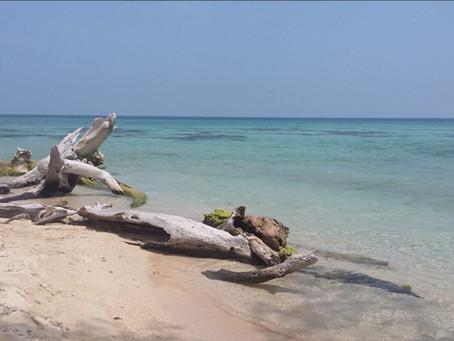 Isla de en Medio, paraíso escondido de Veracruz