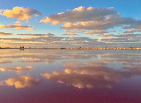 Las Coloradas, un destino en rosa