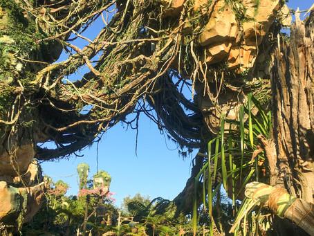 Pandora, el mundo de Avatar