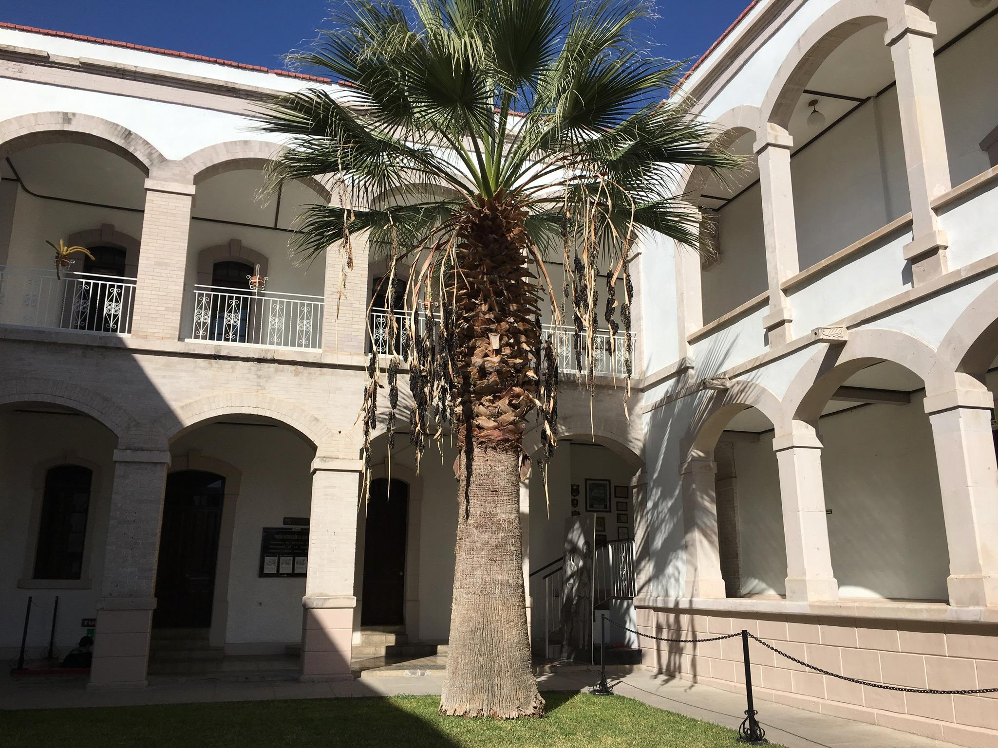 casa Pancho Villa
