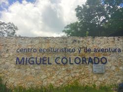 Miguel Colorado