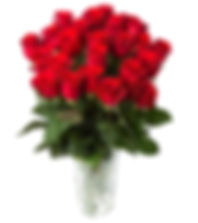 Romance your loved one with Flowers & Gifts from Rockhampton Florist