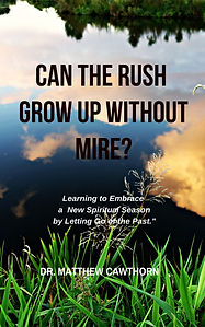 Can the Rush Grow Up Without Mire_.jpg