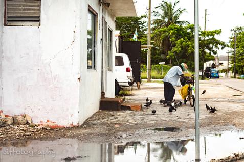 TSP_Nassau I Saw Pt 3-5.jpg
