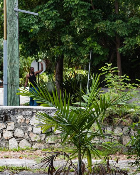 TSP_Nassau I Saw Pt 5-1.jpg