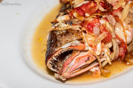 Bahamian fish