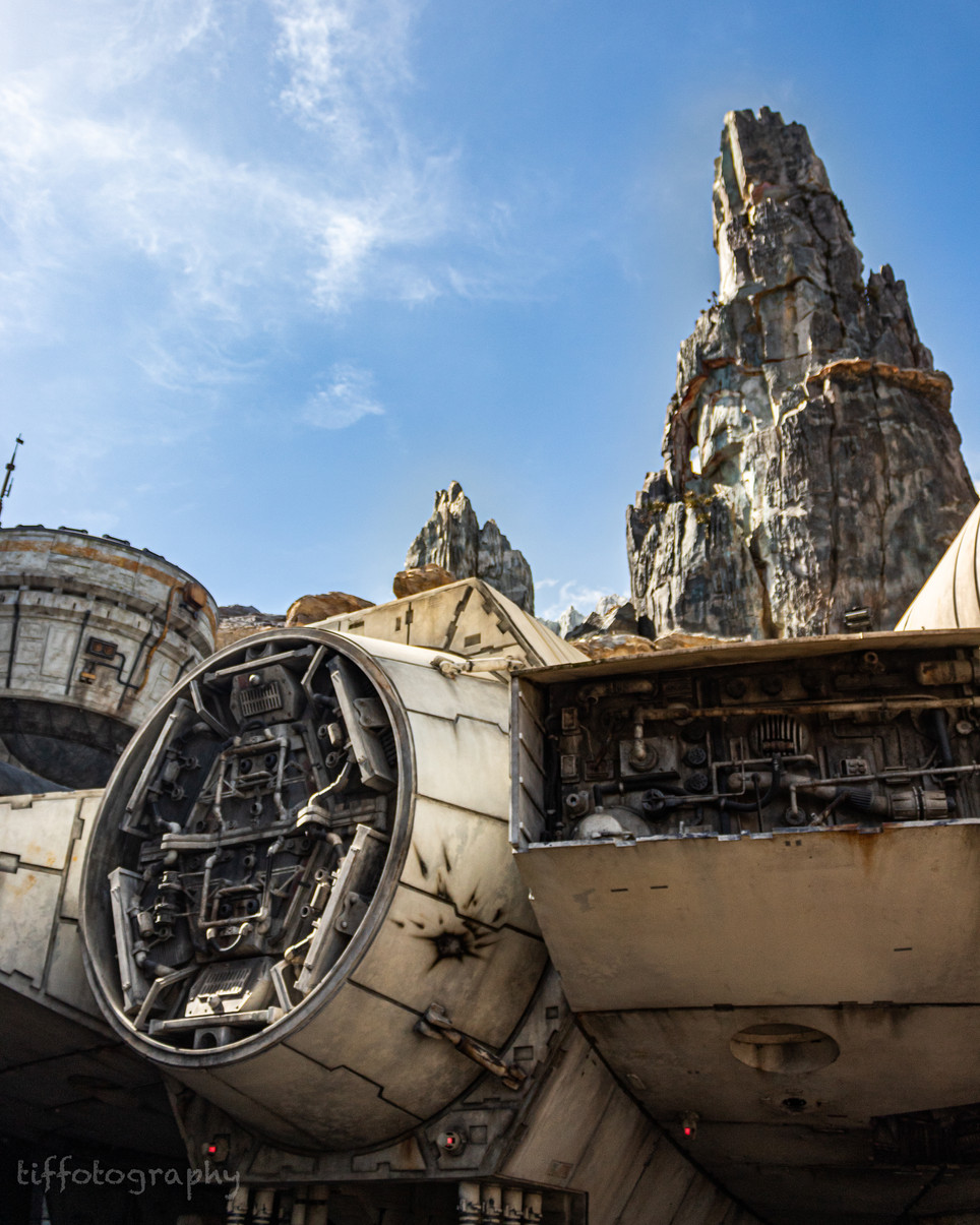 TSP_Star Wars Day 2020-5-2.jpg