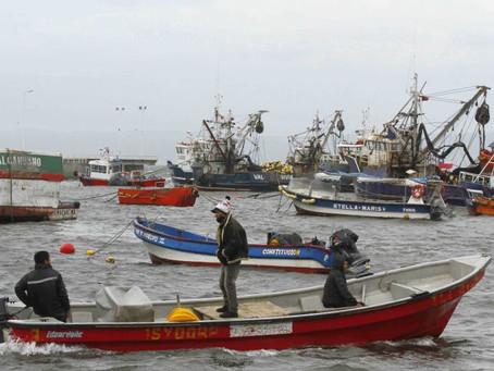 """Este martes la Cámara de Diputados votará anular la denominada """"Ley Longueira"""" de pesca"""