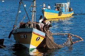 Gobierno irá al Tribunal Constitucional para frenar anulación de Ley de Pesca
