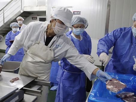 Embajador Luis Schmidt asegura que envíos de mariscos chilenos a China se realizan con normalidad