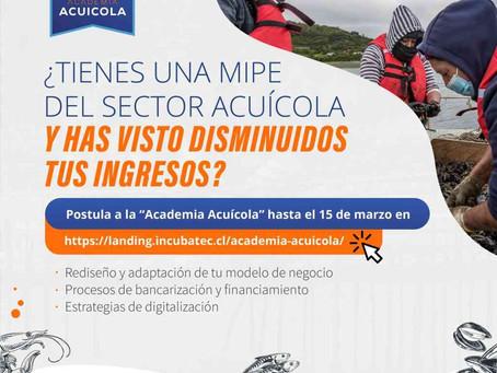 """Llaman a micro y pequeños mitilicultores de Los Lagos a postular a """"Academia Acuícola"""" de Corfo"""
