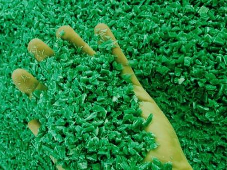GreenSpot, el modelo chileno que promueve la economía circular desde la región de Los Lagos