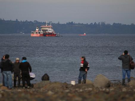 Recolectores de orilla y pescadores de Tenglo piden solución ante presencia del Seikongen