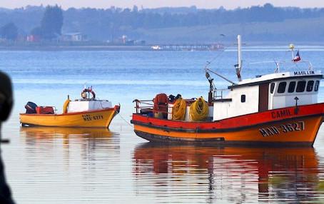 Reuniones con sector artesanal por cambios a ley de pesca suman ya más de 80 a lo largo del país