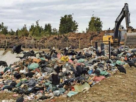 Rechazan la declaración de impacto ambiental para Puntra El Roble