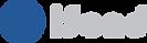 logo-isend-2017-original.png