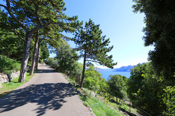 trails in Baska