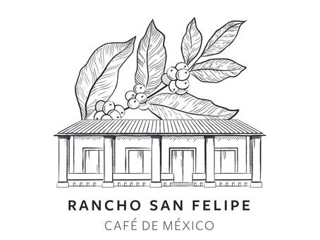 NEU – Kaffee aus der Sierra di Cordoba Mexiko