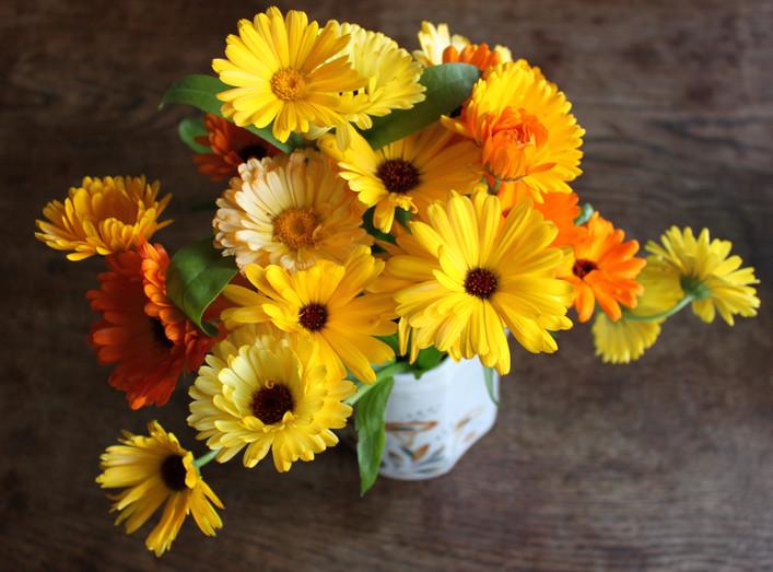 Ringblommor. Kommer odla många olika sorter i olika nyanser av gult, orange och åt det rosa hållet. De doftar gott, är lättodlade och står länge i vas.