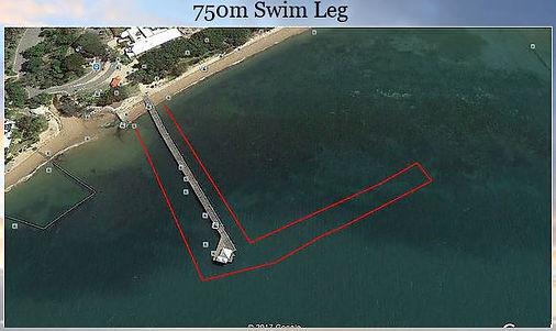 750 swim.JPG