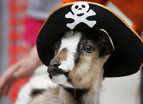 Goat in Costume.png
