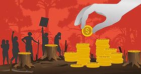 deforestation and dividends.jfif