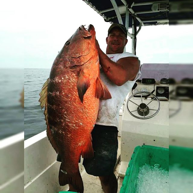 Talk about a monster! Huge record breaking snapper caught in the Gulf! #snapper #monster #gulf #jess