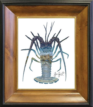 Lobster March On Canvas