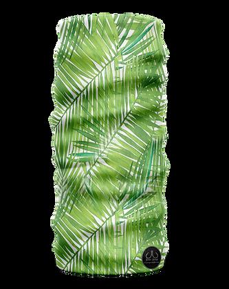 Palm Fron Buff