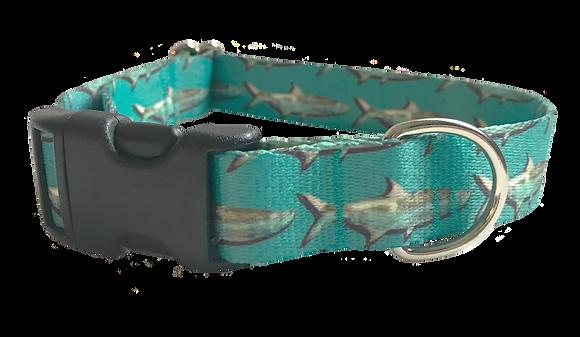 Mangrove Tarpon Pet Collar