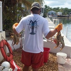 Got some bugs for lobster season while wearing our lobster March performance shirt! Check them out!