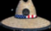 USA FLAG.png