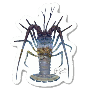 Lobster March Sticker