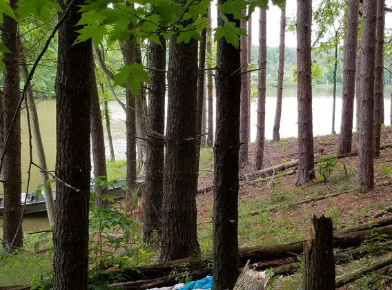 Boathouse in the Woods, photo by Dr. M. Neopolitan
