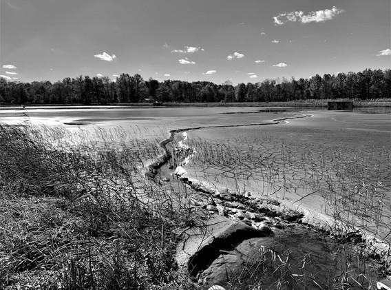 sludge lagoon black and white.jpg