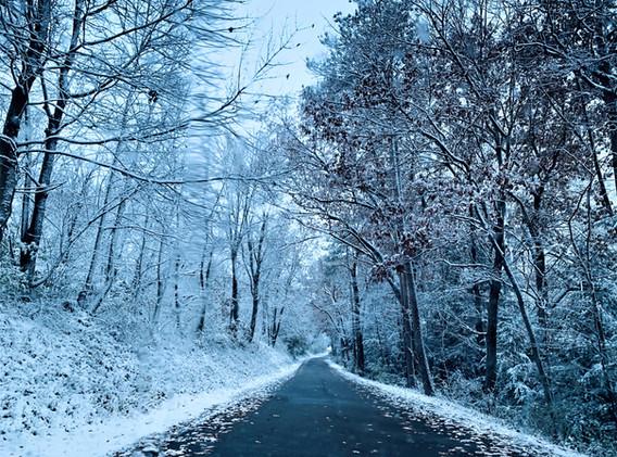 2NORTH GATE SNOW.jpeg.jpg