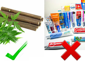 Top Reasons To Avoid Tooth Pastes And Switch To Neem | Health Tips 2020