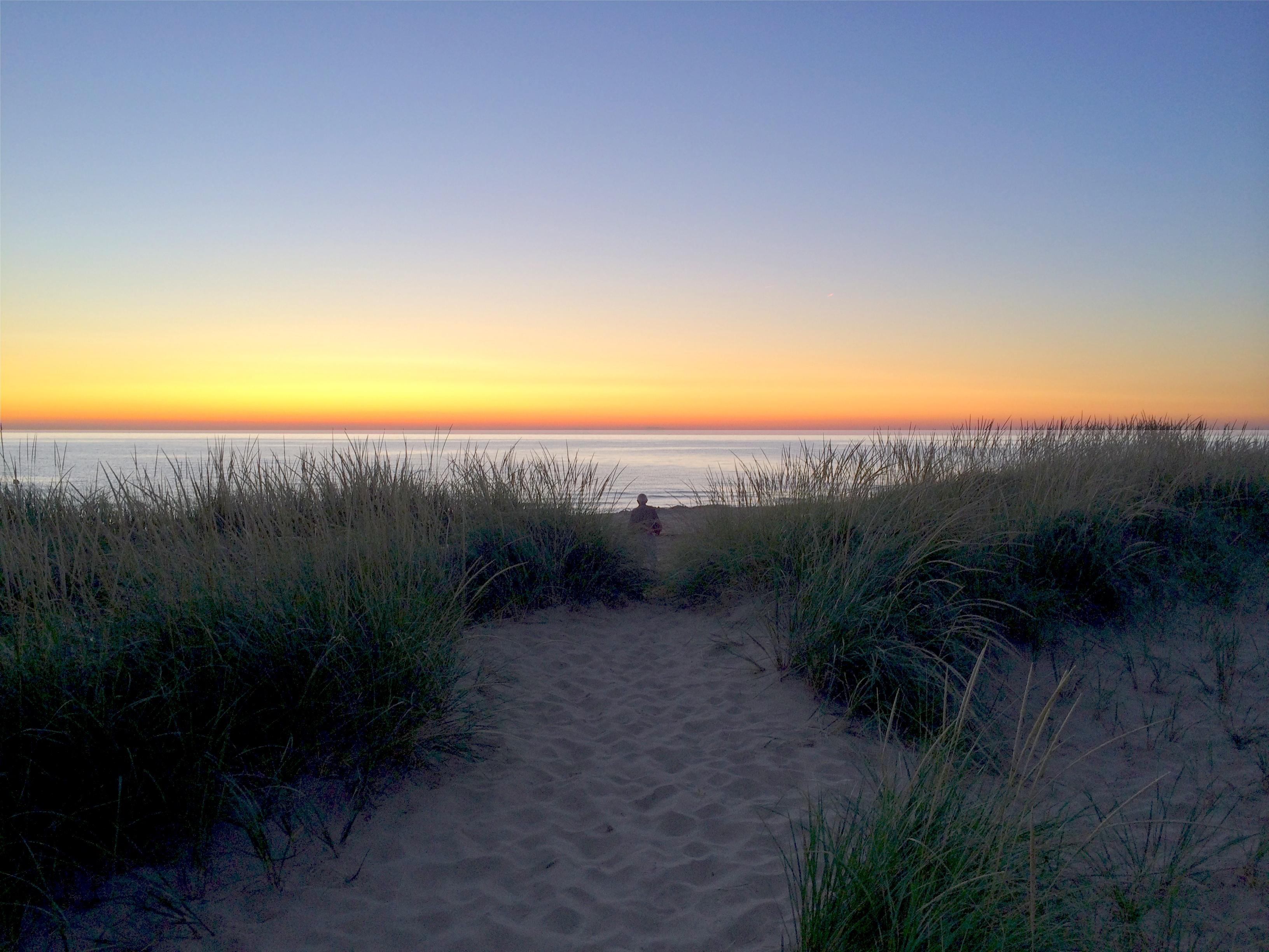 Dusk Path Through the Beachgrass