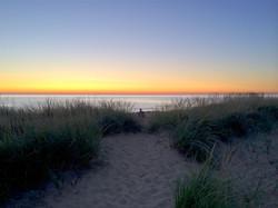 Dusk Path Through the Beachgrass