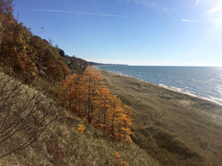 Fall Dunes w_Paraglider