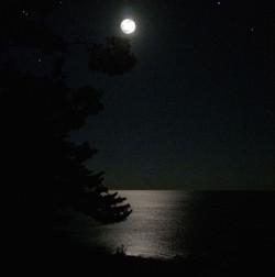 Full Moon on the Lake