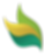 צבעים - לוגו אחרון-01 (1)__01__01.png